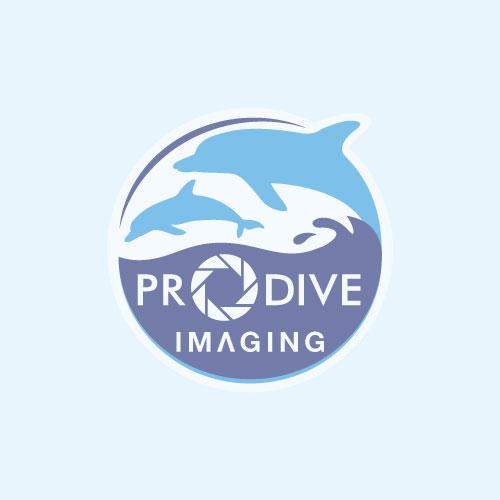 M1200 LED Scuba Diving Spot Light - Blue