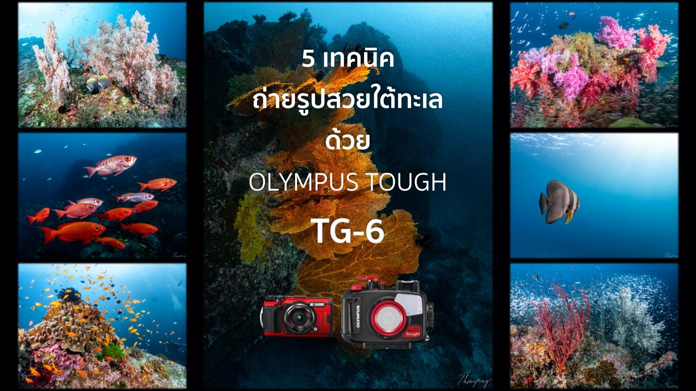 5 เทคนิคถ่ายรูปสวยใต้ทะเลด้วยกล้องคอมแพค OLYMPUS Tough TG-6